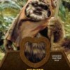 rp_2013-Topps-Star-Wars-Jedi-Legacy-Relic-Ewok-Fur-212x300.jpg