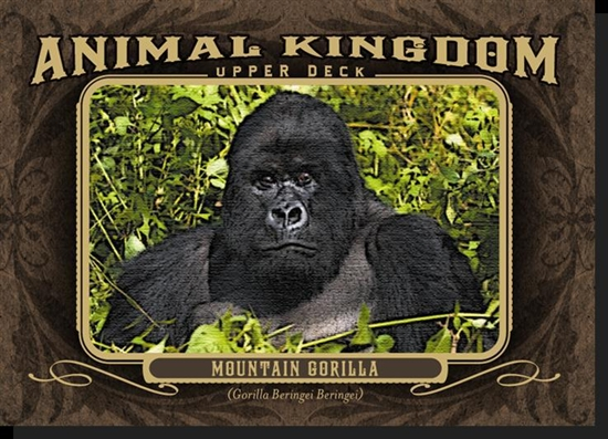 Animal Kingdom Gorilla Card