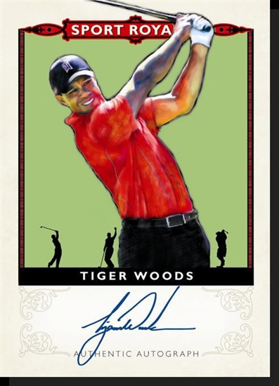 Tiger Woods Goodwin Champions Auto