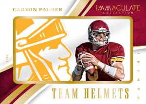 immaculate-college-multisport-carson-palmer