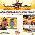 Product Preview: 2019 Topps WWE SummerSlam!