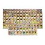 Pokemon Base Set 1st Edition Shadowless Complete Set – All Cards PSA 10!